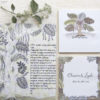 entangled leaves coordinated invitations and benchers